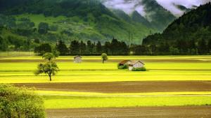 landscape-176602_960_720