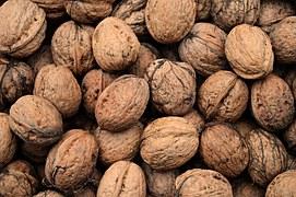 walnuts-986381__180