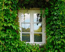 window-1679344__180